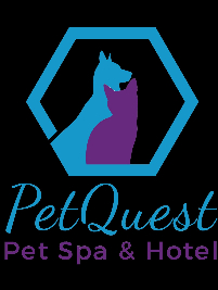 Business Directory PetQuest Spa and Hotel in Chattanooga TN